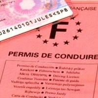 Copie du permis de conduire du titulaire